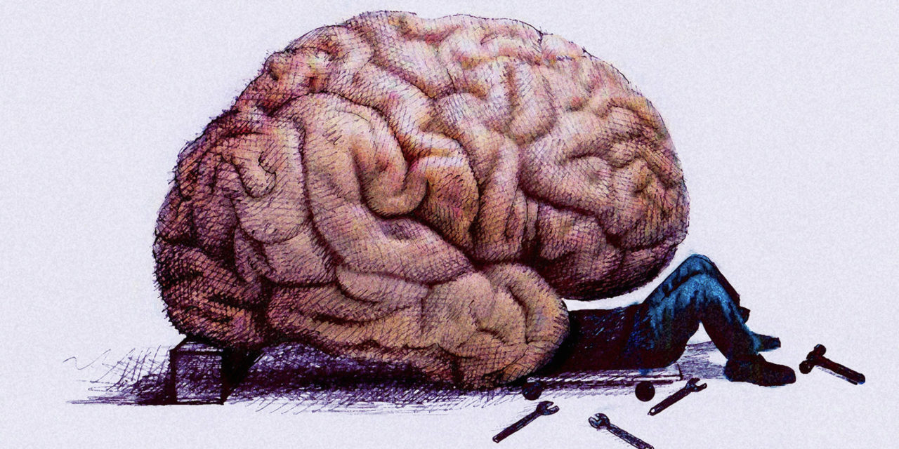 """Νέα έρευνα αποδεικνύει ότι δεν υπάρχει """"αρσενικός ή θηλυκός εγκέφαλος""""."""