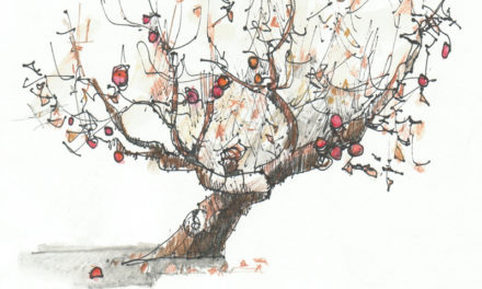 Το δέντρο που έδινε. Μια υπέροχη διδακτική ιστορία!