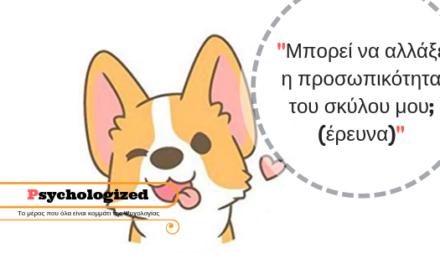Μπορεί να αλλάξει η προσωπικότητα του σκύλου μου;(έρευνα)